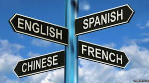 What is the lingua franca?  Why is that phrase not in English?